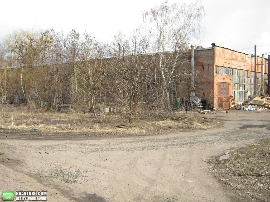 сдам нежилой фонд. Чернигов, ул. Мира пр 194. Цена: 1000$  (ID 2160215) - Фото 3