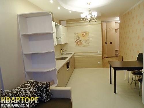 сдам 1-комнатную квартиру Киев, ул.Вышгородская 45 - Фото 7