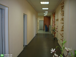 сдам офис Одесса, ул.Гаванная/  Дерибасовская - Фото 3