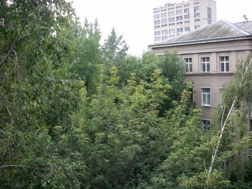 продам многокомнатную квартиру Киев, ул.Академика Богомольца  7/14 - Фото 3