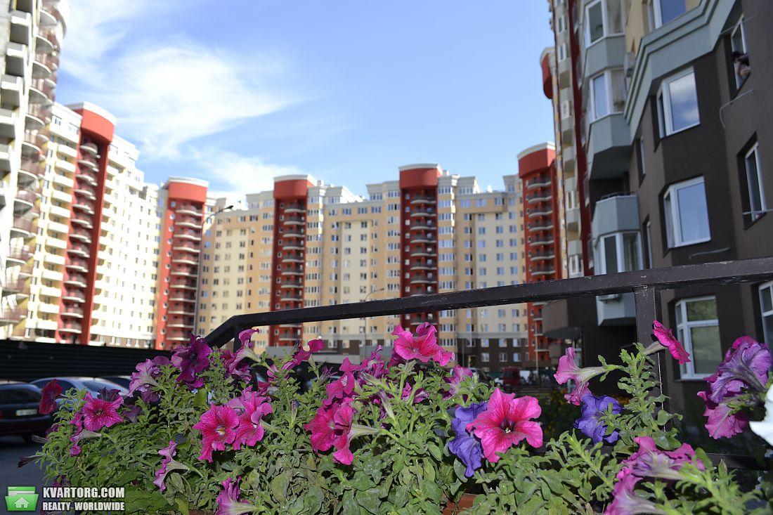 Цветы ломоносова купить киев, томске фото