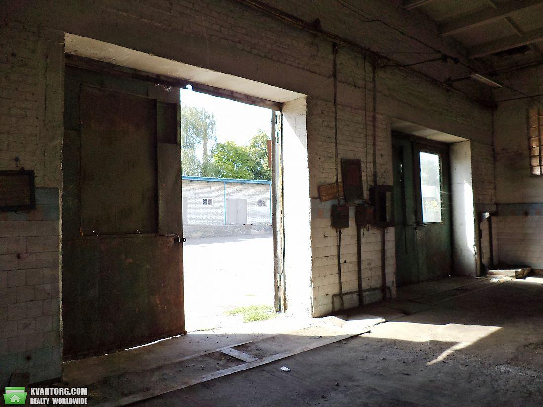 сдам склад Чернигов, ул.Чернигов, Ремзавод - Фото 7