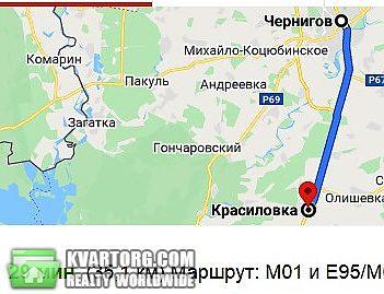 продам дом Чернигов, ул.с. Красиловка, Козелецкий - Фото 6