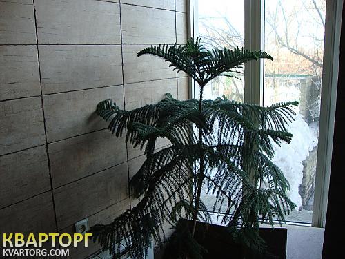 продам дом Днепропетровск, ул.р-н пр металлургов - Фото 9